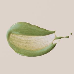 Маска с хлорофилл-каротиновой пастой Aiva